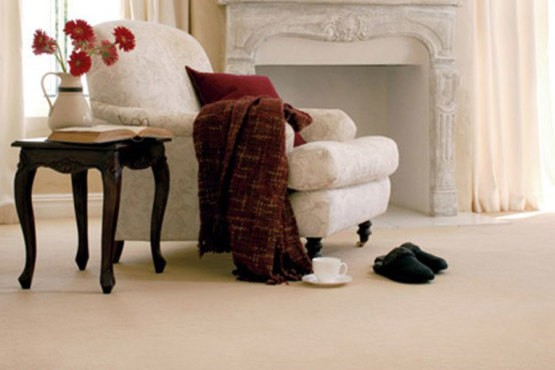 Upholstery Cleaning   ttps://www.greensteamkirkland.com/