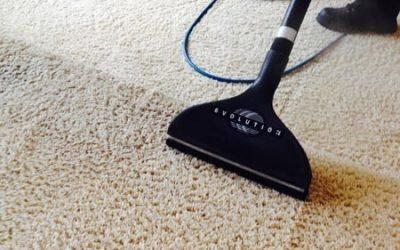 5 Rug Care Tips For Your home