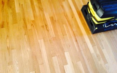 Professional Hardwood Floor Steam Cleaning vs. doing it Yourself