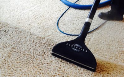Improve Indoor Air Quality with Regular Carpet Cleaning